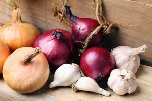 onion-and-garlic-varieties